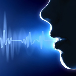 Why voice is the next big internet wave